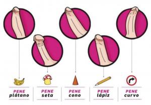 formas de pene